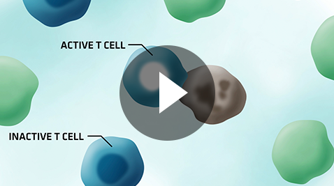 Click to watch how OPDIVO® and YERVOY® can work with your immune system to fight cancer.