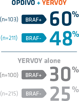 OPDIVO® (nivolumab) + YERVOY® (ipilimumab) demonstrated a 60% reduction in the risk of progression for BRAF+ patients and a 48% reduction in the risk of progression for BRAF- patients